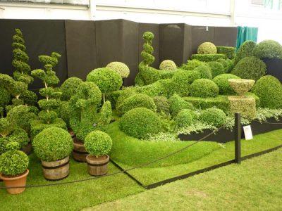 James Chelsea Flower Show 2013