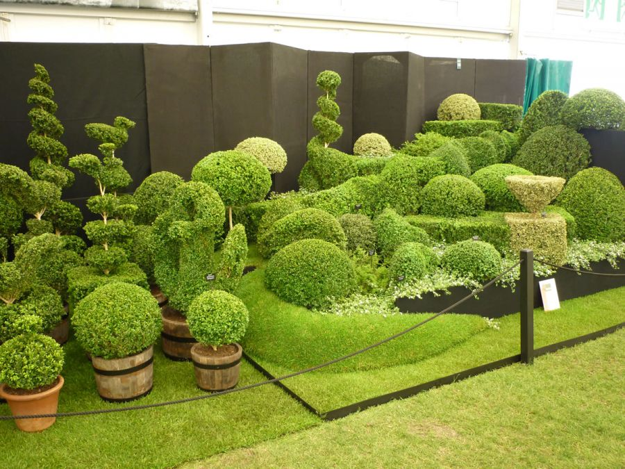Cutting Shaping Topiary Arts