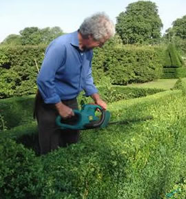 Topiary Cutting & Shaping Gallery