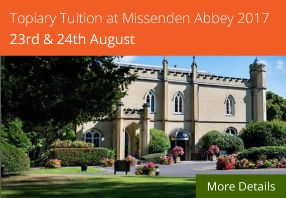 Missenden Abbey Topiary Course
