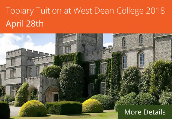 Topiary Tuition Course at West Dean College