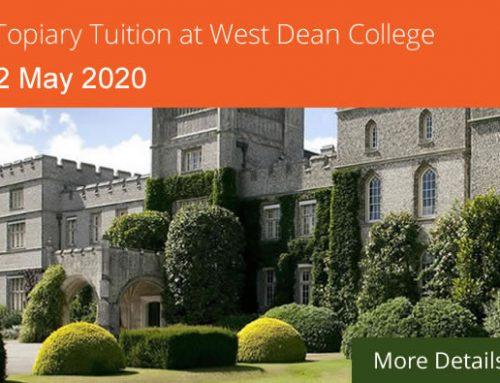 Create your own topiary course at West Dean College on 2nd May 2020