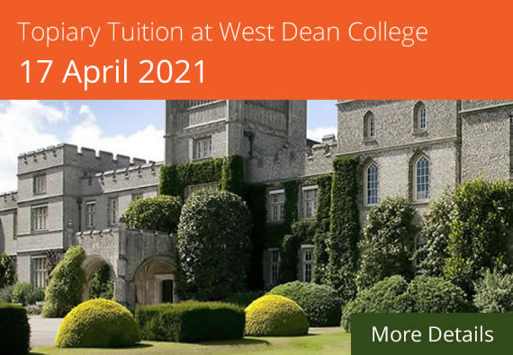 Topiary Tuition Course at West Dean College 17 April 2021